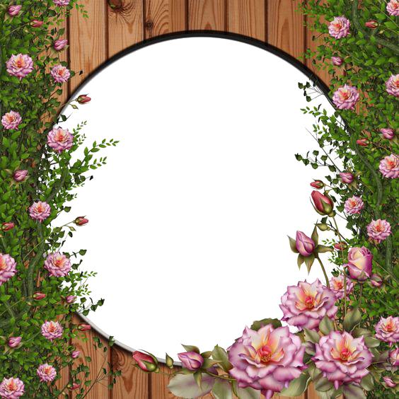 Rose Vine PNG HD - 144678
