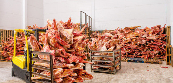. PlusPng.com after police launched a massive raid on the countryu0027s meat processors,  some of whom stand accused of corruption and the distribution of rotten meat . - Rotten Meat PNG