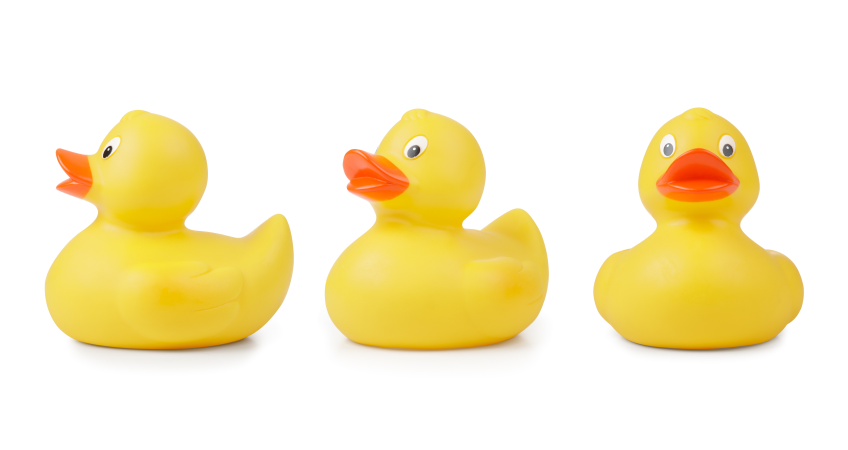 Get Your Ducks in a Row - Workforce Alignment that Works - Row PNG