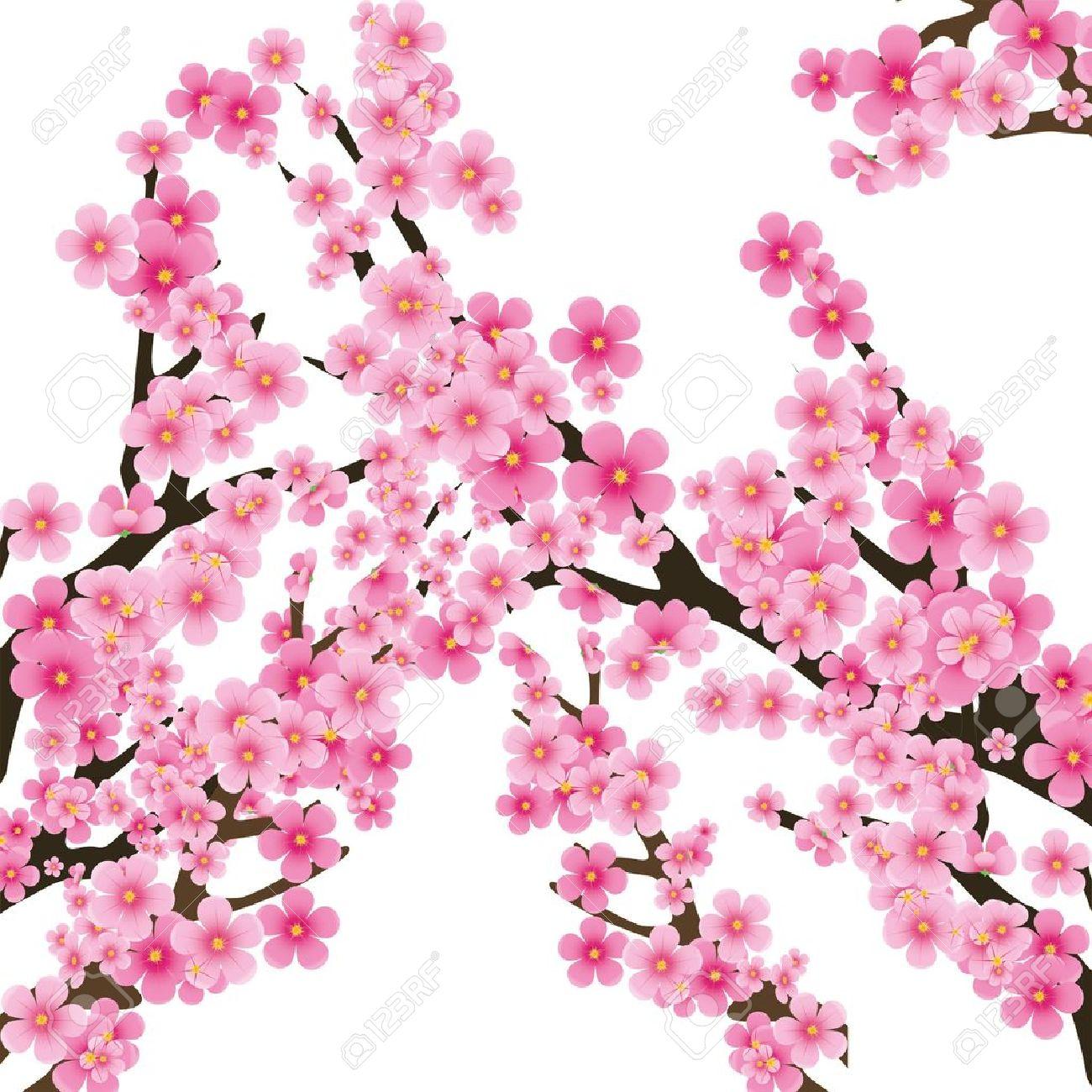 Cherry Blossom clipart sakura flower #4 - Sakura Flower PNG HD