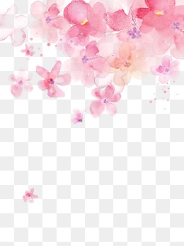 Cherry blossoms, Cherry Blossoms, Watercolor, Pink PNG and Vector - Sakura Flower PNG HD