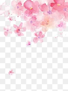Sakura Flower PNG HD - 121370