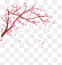 Vector cherry, Vector, Cherry Blossoms, Flower PNG Image - Sakura Flower PNG HD