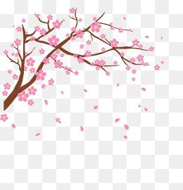 Sakura Flower PNG HD - 121361