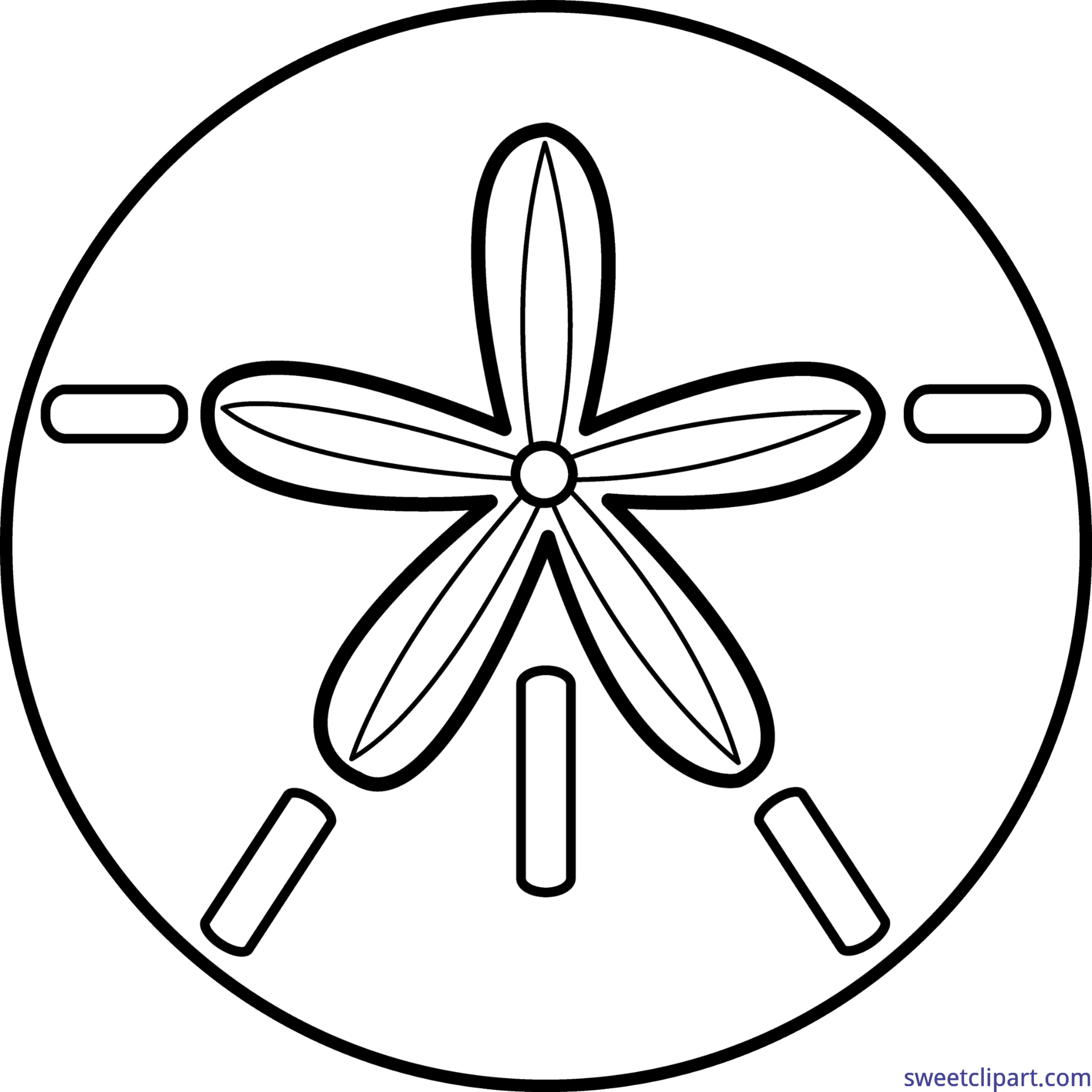Sand Dollar Lineart Clip Art - Sand Dollar PNG Black And White