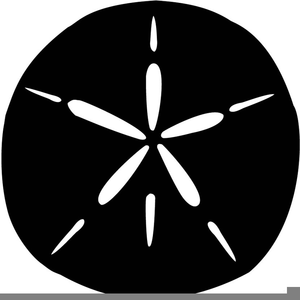 Sand Dollar Silhouette Image - Sand Dollar PNG Black And White