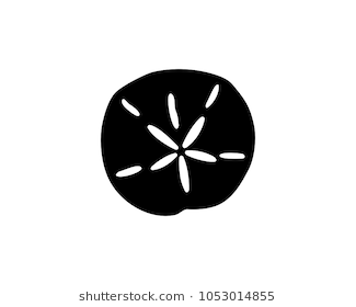 Simple black silhouette of a sand dollar, vector illustration. - Sand Dollar PNG Black And White
