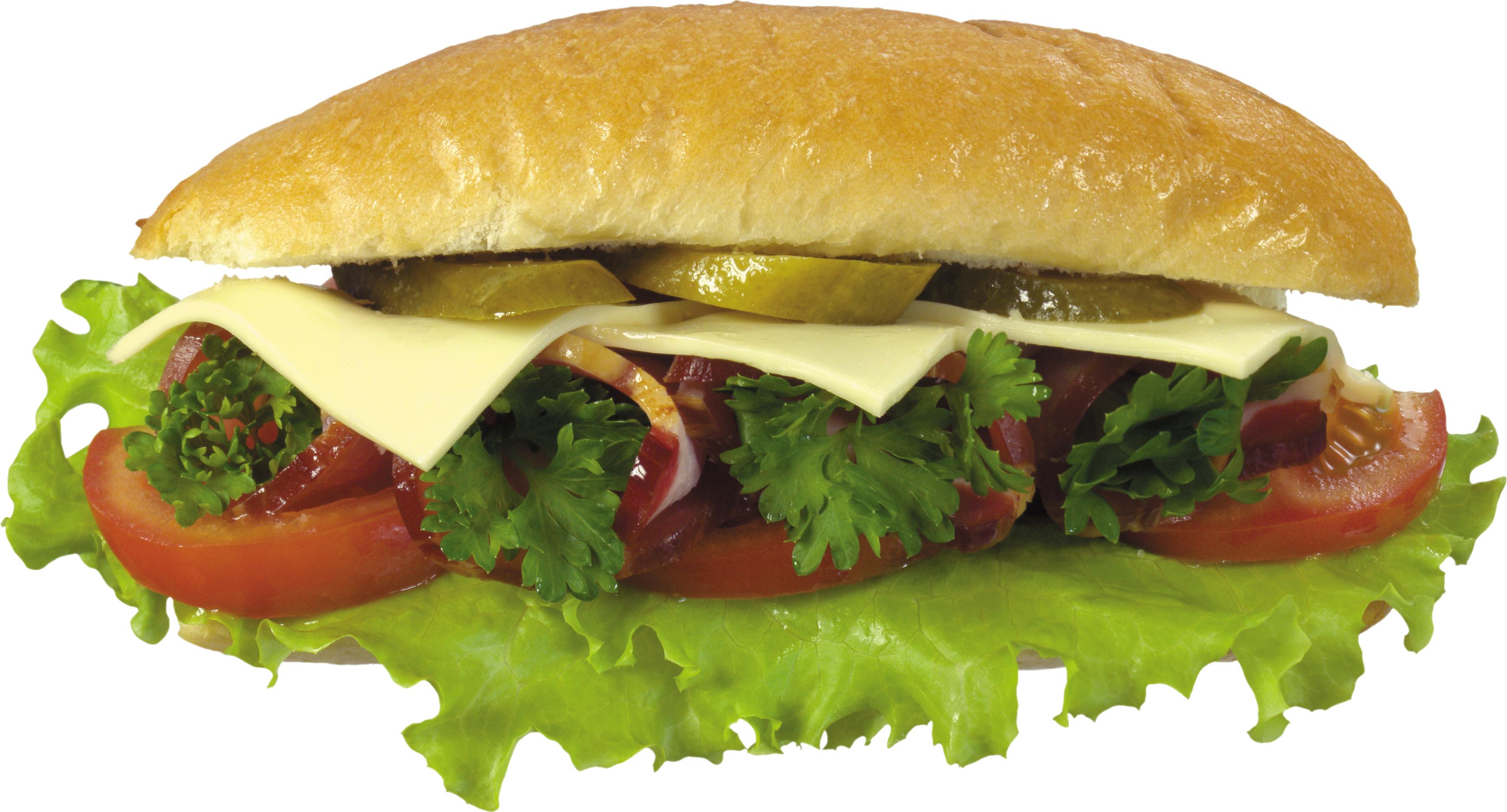 hamburger, burger PNG image - Sandwich PNG HD