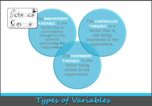 Science Corner: All About Experiment Variables - Science Variable PNG