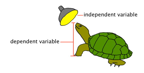 Science Variable PNG - 54951