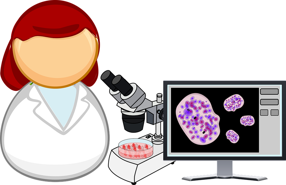 Analysis, Biology, Cell, Cell Culture - Scientist HD PNG