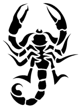 Download PNG image - Scorpion Tattoos Png Picture - Scorpion HD PNG