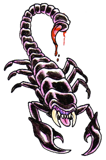 Scorpion Tattoos Png Clipart PNG Image - Scorpion HD PNG