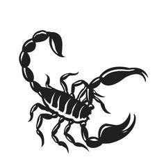 Scorpion Tattoos PNG - 10751