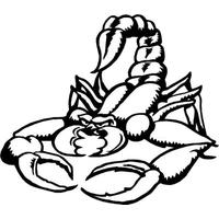 Scorpion Tattoos PNG - 10761