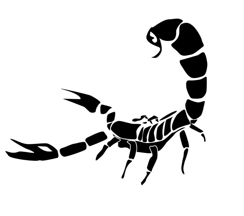 Scorpion Tattoos PNG - 10765