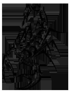 Scorpion Tattoos PNG - 10754