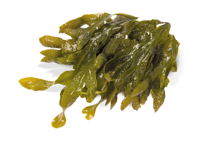Seaweed! Naturally Healthy u0