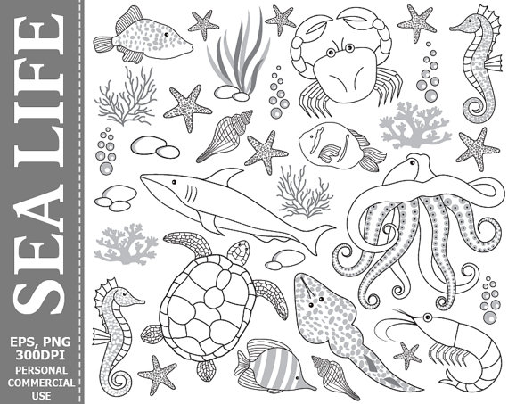 Digital Sea Life Clip Art - Underwater, Fish, Crab, Octopus, Black, White,  Shark Clip Art from TheCreativeMill on Etsy Studio - Sea Life PNG Black And White