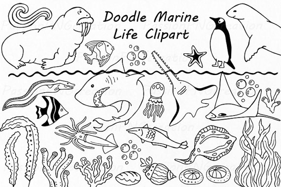Doodle Marine Life Clipart, Sea Life clip art, Ocean life, PNG, EPS, fish,  vector, Under the Sea, For Personal and Commercial use - Sea Life PNG Black And White