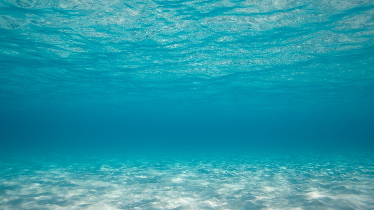Ocean-floor-background.png - Sea PNG HD