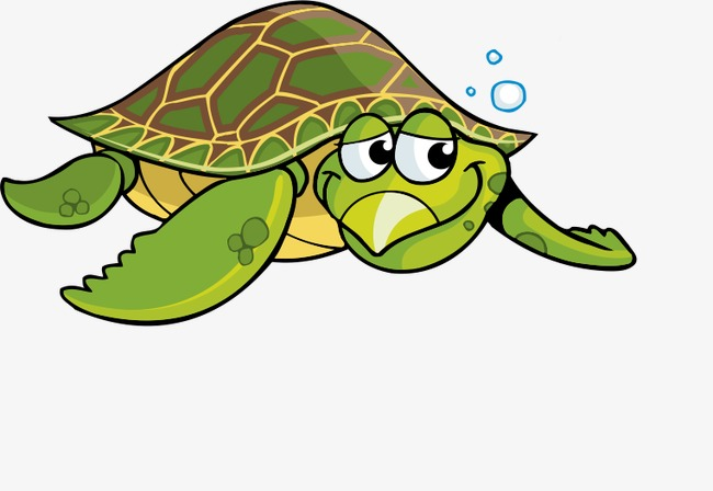 Sea Turtle Cartoon PNG - 145067