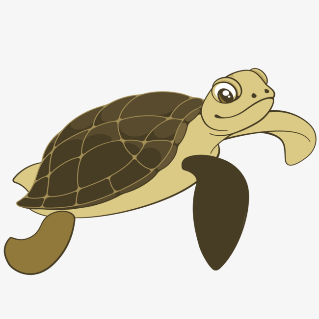 Cartoon turtle, Sea Turtle, Cartoon, Tortoise PNG and Vector - Sea Turtle Cartoon PNG