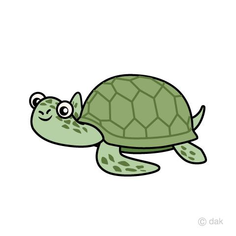 Sea turtles swim - Sea Turtle Cartoon PNG
