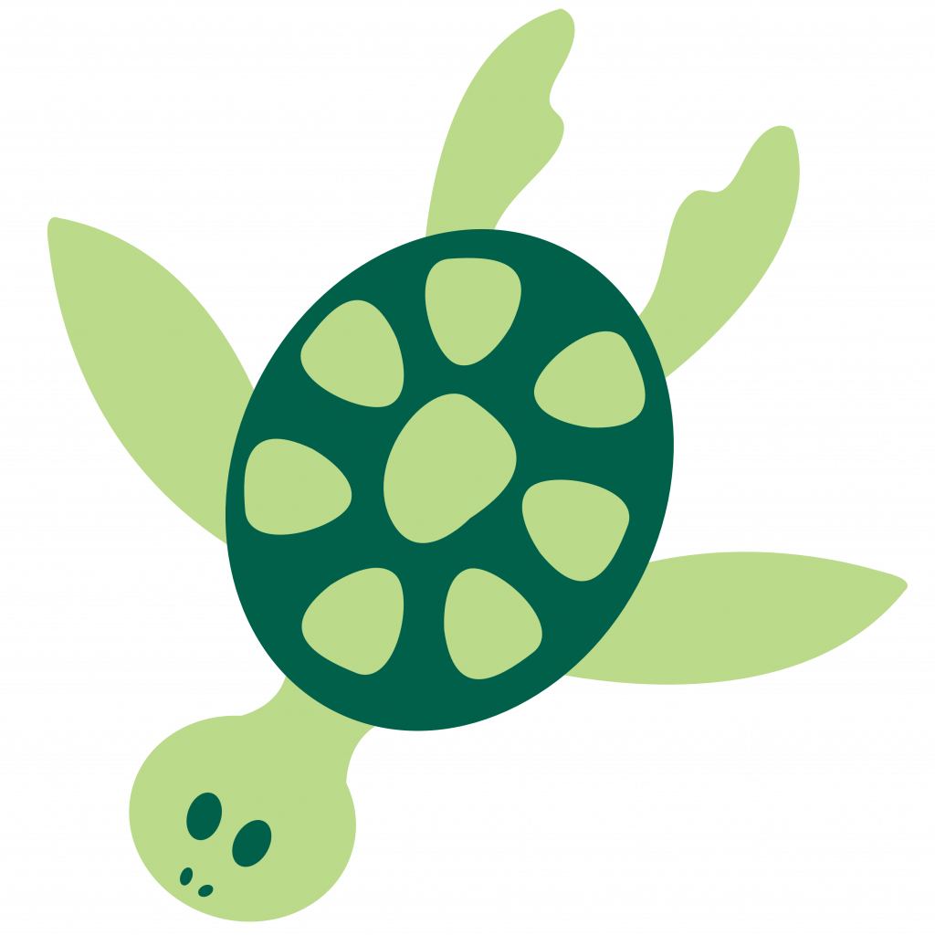 Turtles How To Draw A Cartoon Sea Turtle Animals Fun2draw - Sea Turtle Cartoon PNG