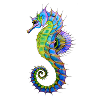 Seahorse PNG - 19980