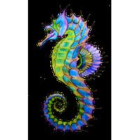 Seahorse Png Hd PNG Image - Seahorse PNG