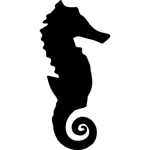 Seahorse silhouette free icon - Seahorse PNG
