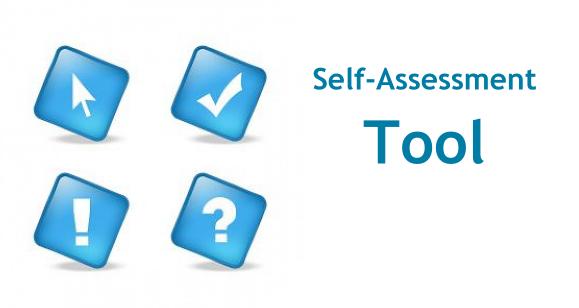 Reveal Self-Assessment Tool - Self Assessment PNG