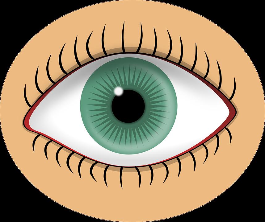 Sense Of Sight PNG - 84892