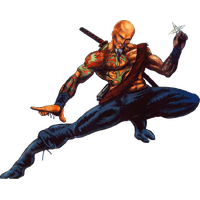 Shadow Warrior Png Image PNG Image - Shadow Warrior PNG