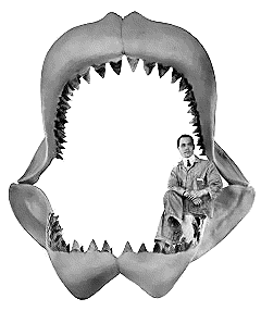 Shark Jaws PNG-PlusPNG.com-240 - Shark Jaws PNG