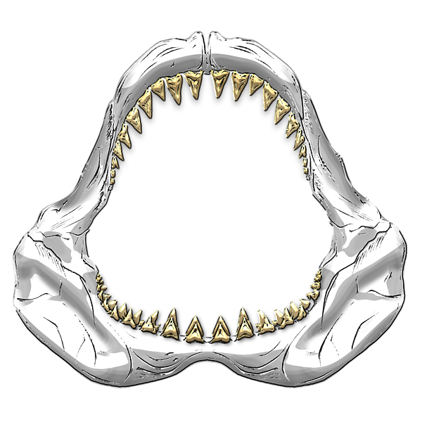 Click and drag to re-position the image, if desired. - Shark Jaws PNG