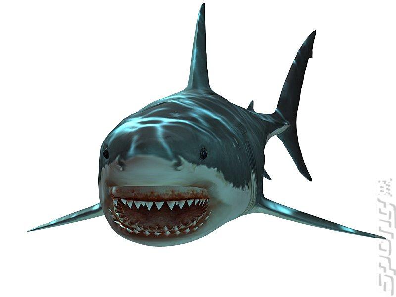 Shark Jaws PNG - 49147