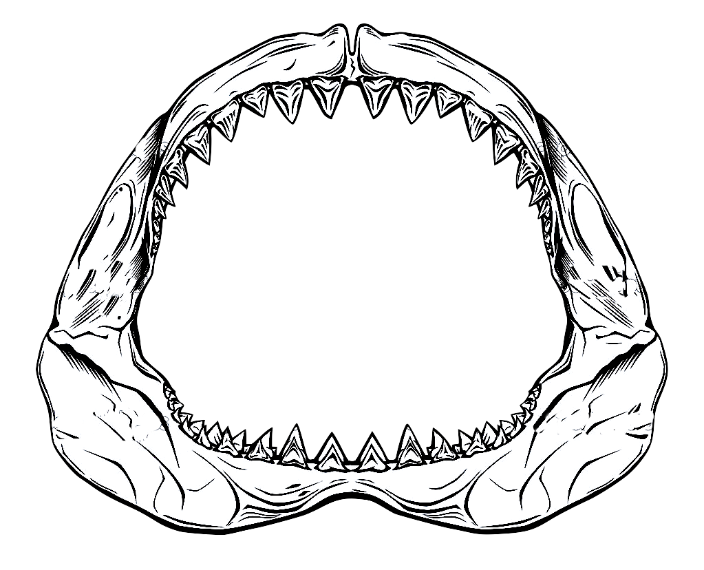 pin Head clipart shark #1