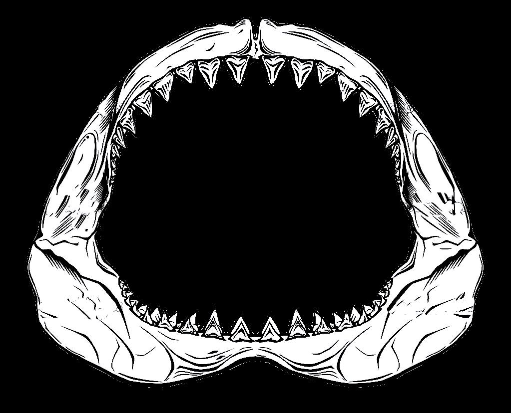 Shark Jaws Icon image #24336