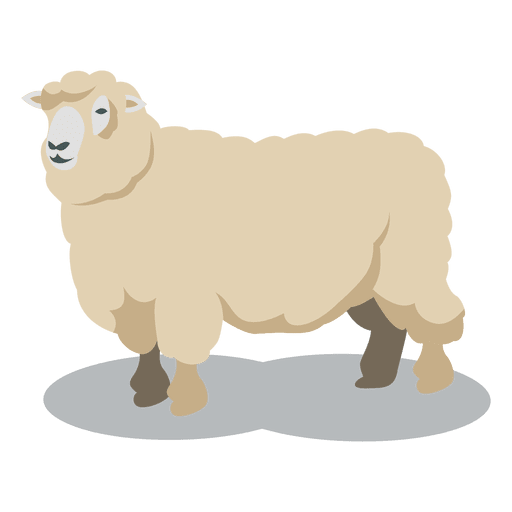 Sheep wool animal Transparent PNG - Sheep And Wool PNG
