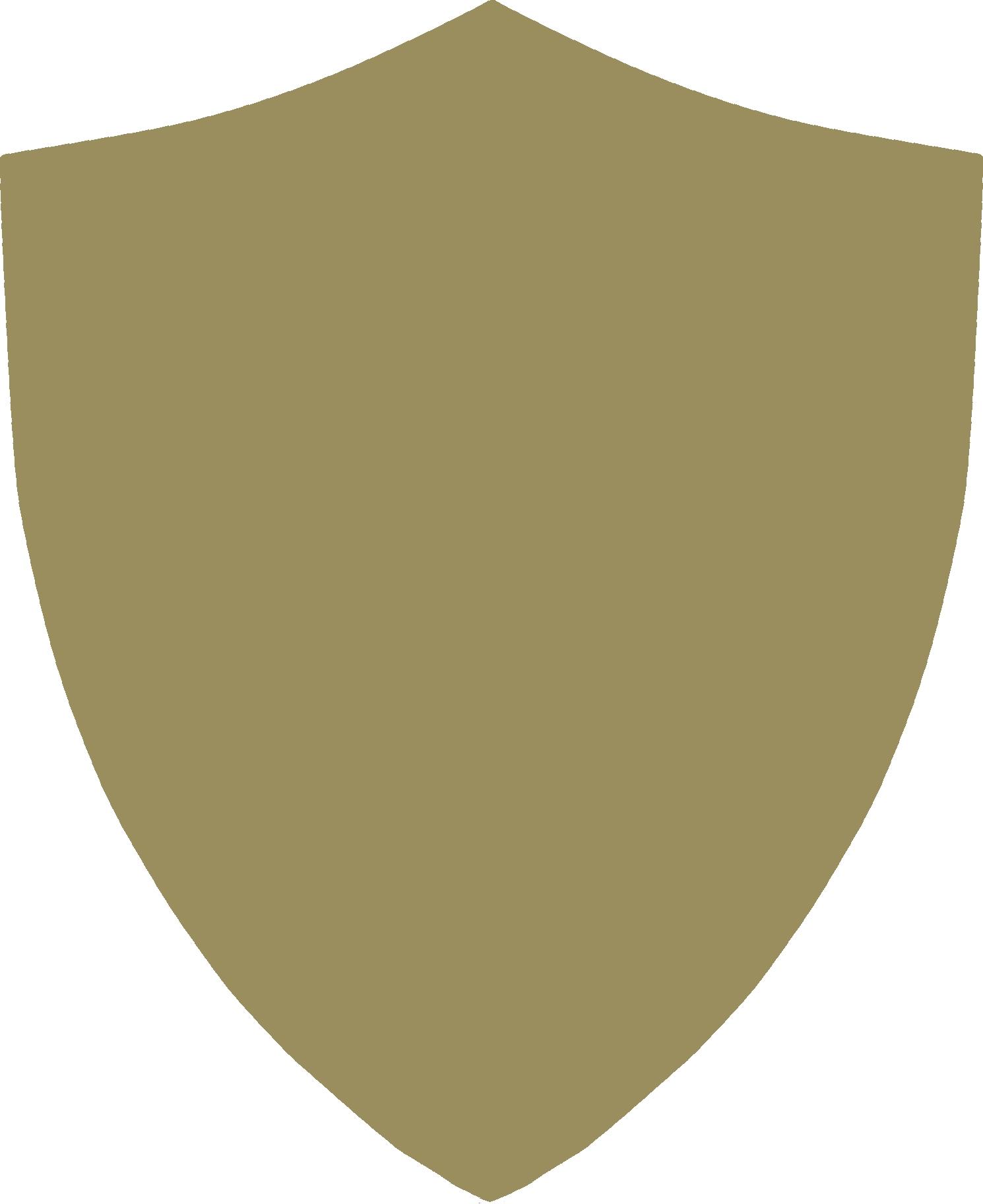 Shield HD PNG - 118030