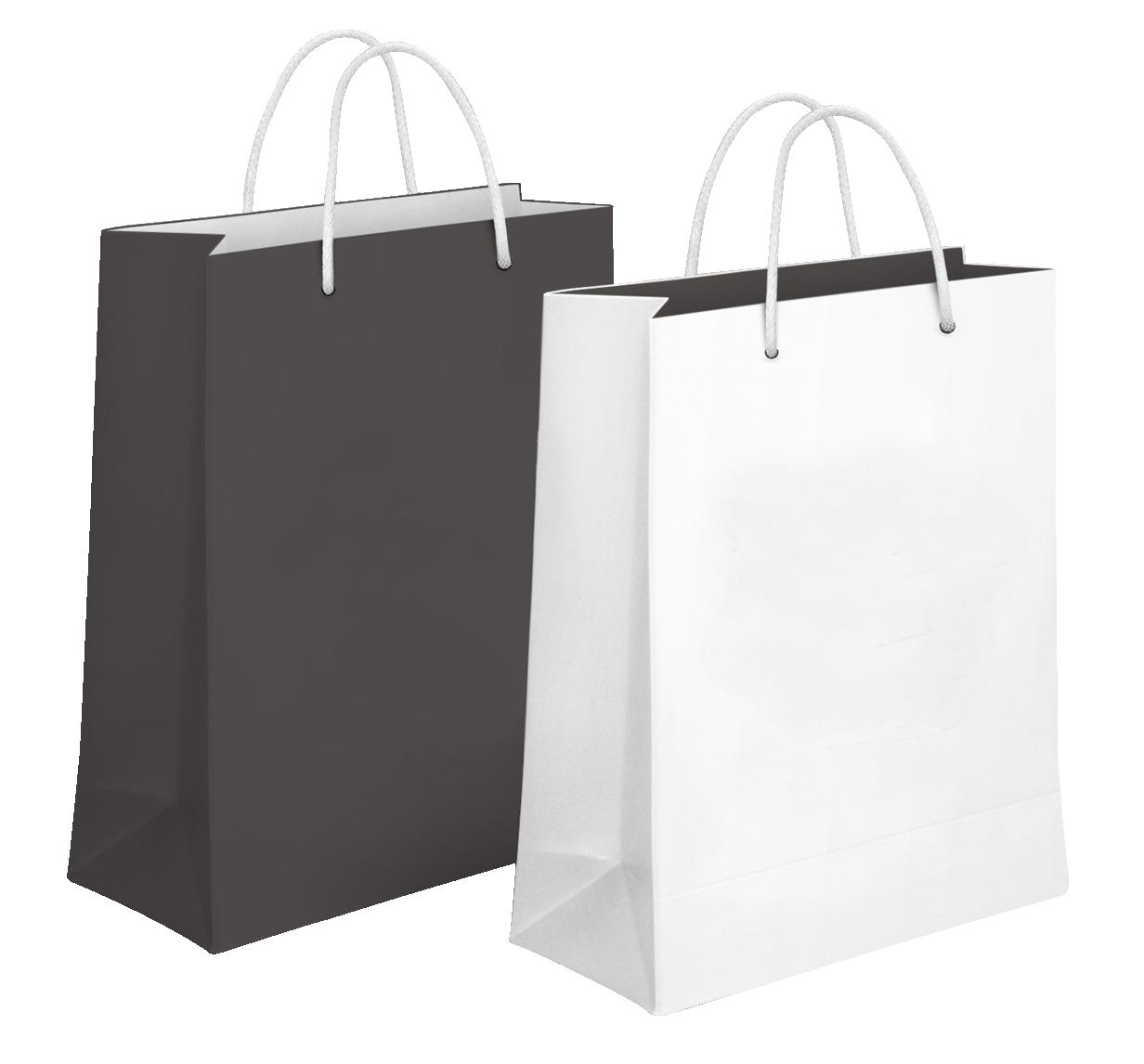 Shopping Bag PNG-PlusPNG.com-1232 - Shopping Bag PNG