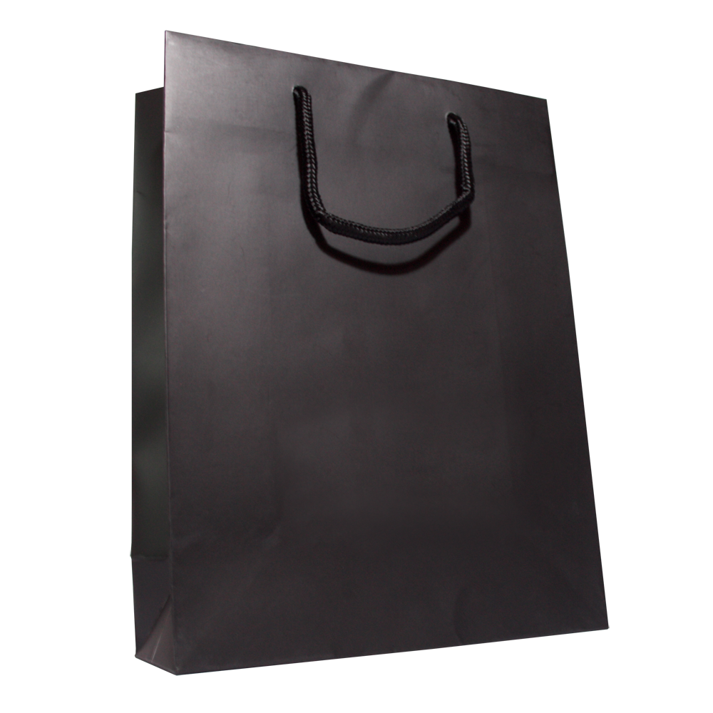 Shopping bag PNG image - Shopping Bag PNG