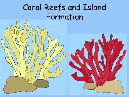 Simple Coral Reef PNG-PlusPNG.com-440 - Simple Coral Reef PNG