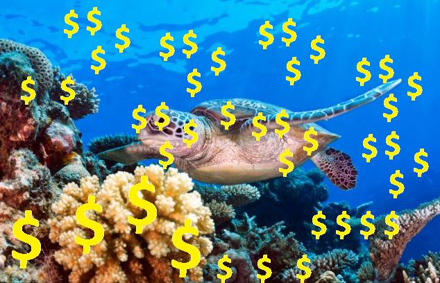 Coral u003d $$$ (£££). PlusPng.com Itu0027s simple. - Simple Coral Reef PNG