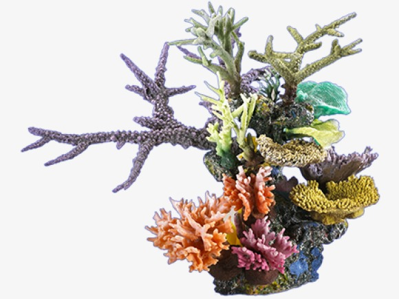 coral, Reefs, Deep Sea Plants PNG Image and Clipart - Simple Coral Reef PNG