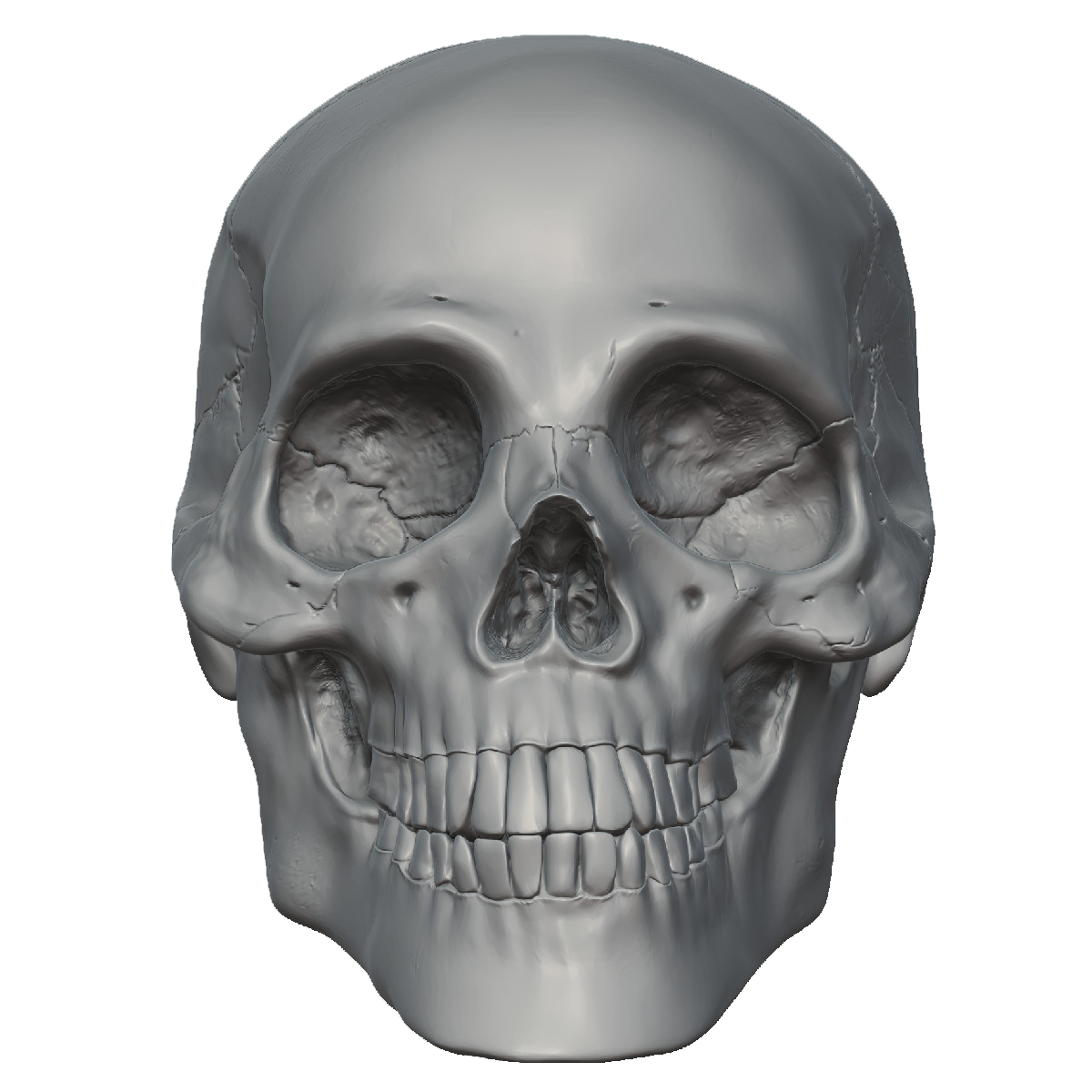Skeleton Head Free Png Image PNG Image - Skeleton HD PNG