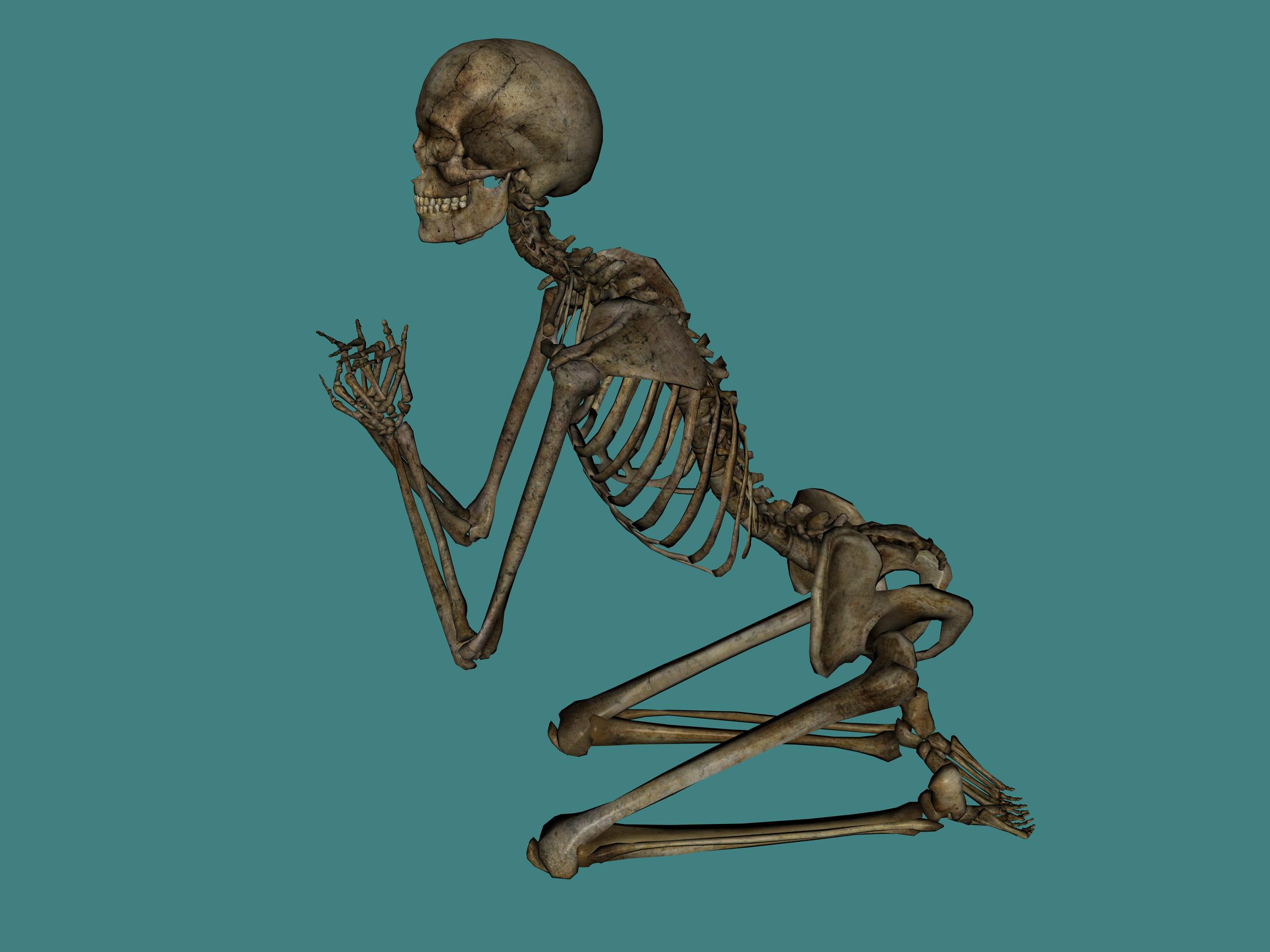 Skeleton PNG image