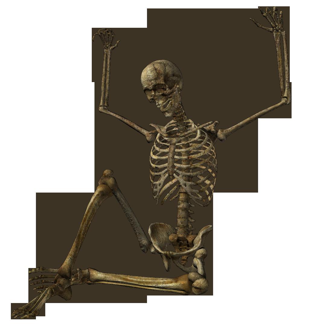 Skeleton PNG - 16865